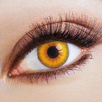 Yellow contact lenses Sun Salutaion