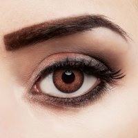 Contact lenses Sienna Brown