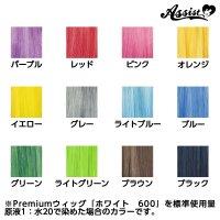* Assist Original * Wig Dye - Perückenfärbemittel